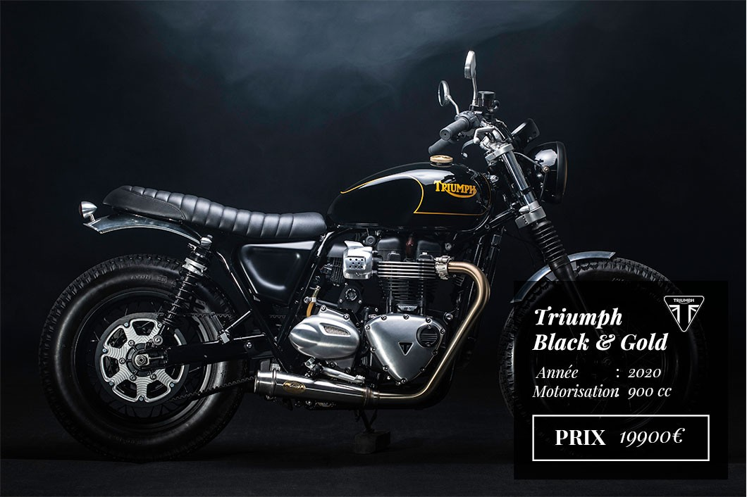 Triumph Black Gold
